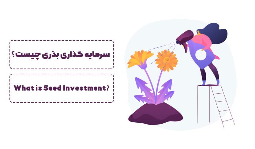 سرمایه گذاری بذری چیست